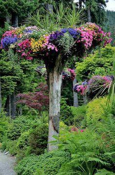 arbre mort bois flott et souche d 39 arbre pour d corer le jardin jardin pinterest tronc. Black Bedroom Furniture Sets. Home Design Ideas