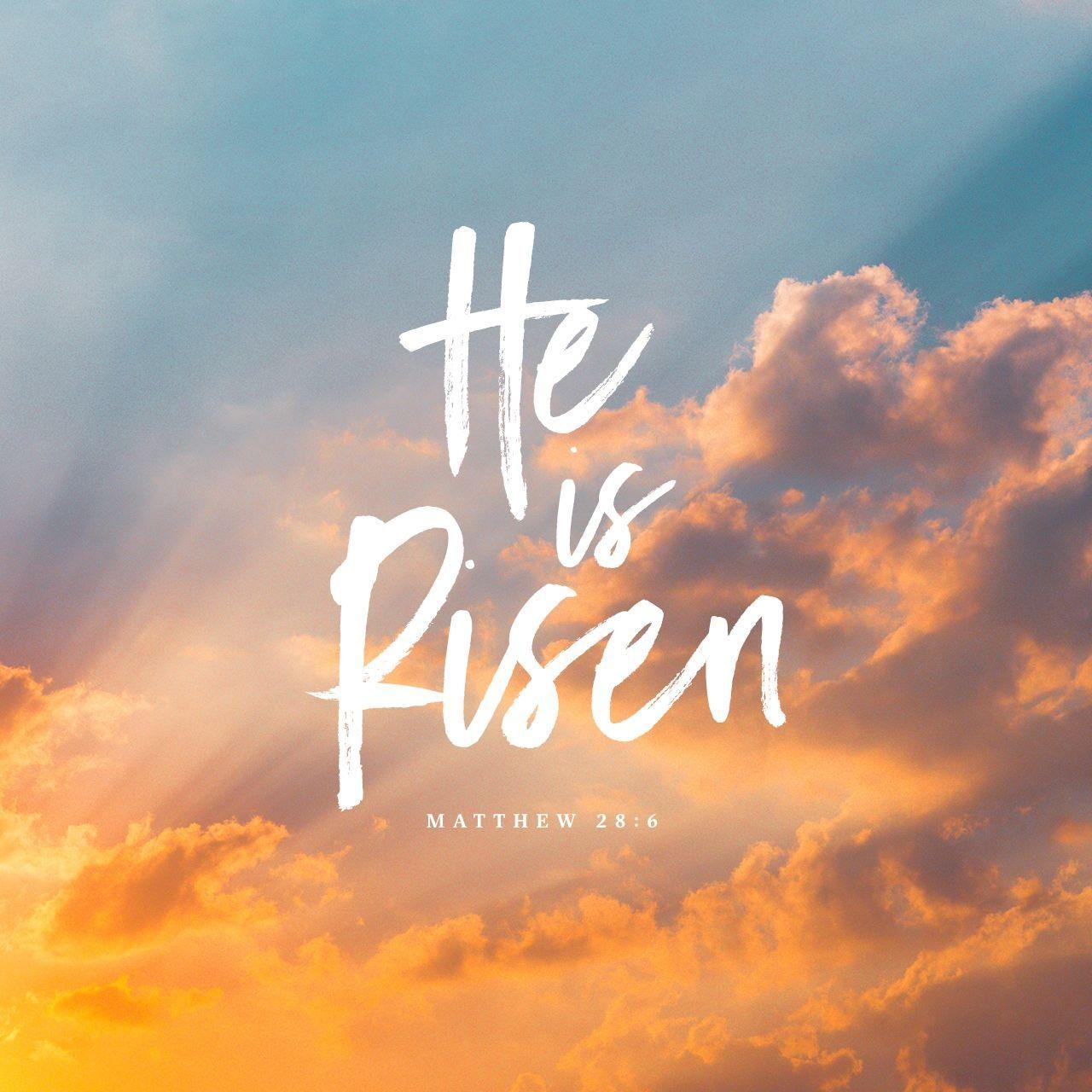 He is risen! | Jesus is alive, Bible, Matthew 28