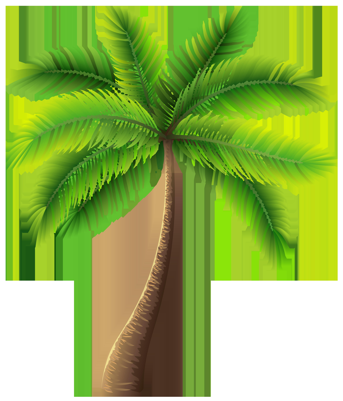 Palm tree clip art web clipart Palm tree clip art, Palm