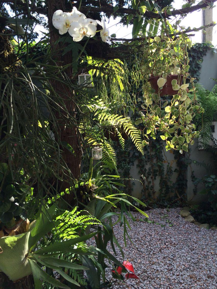 Jardim Sinke
