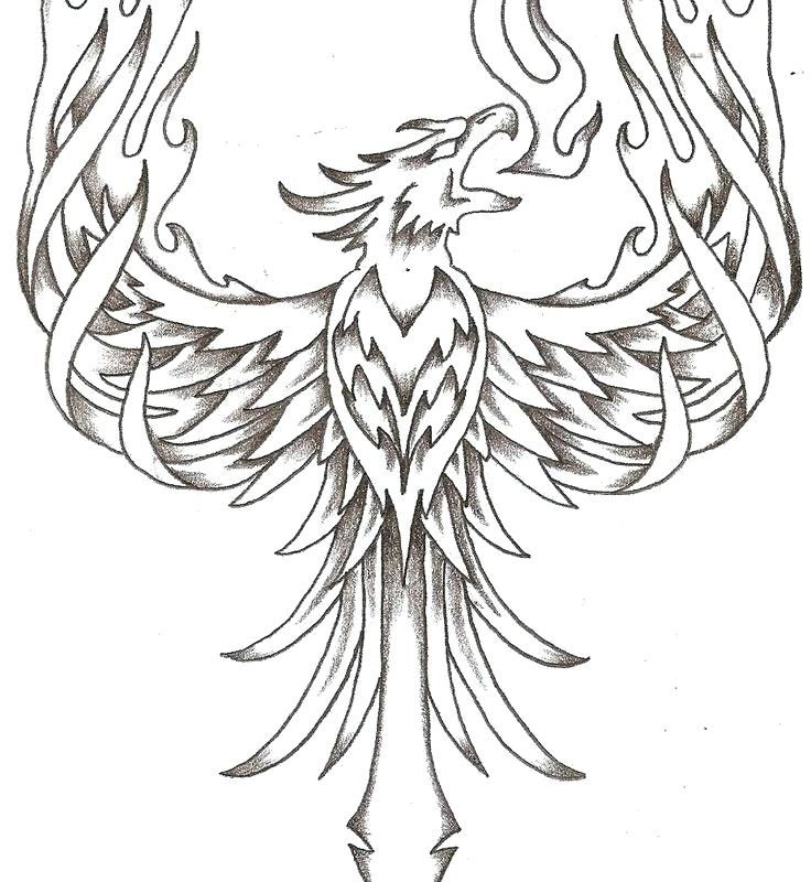 Phoenix Coloring Pages Cute Baby Animal Coloring Pages Cartoon Bird Coloring Pages Coloring Pages Animal Coloring Pages