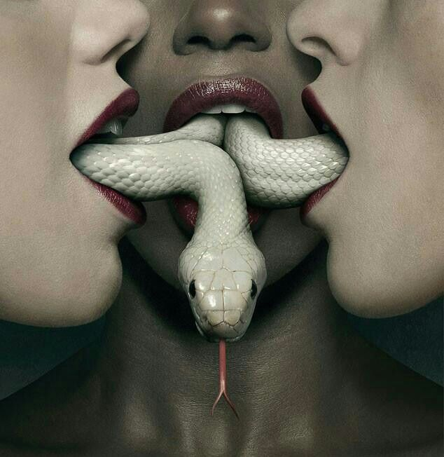 T-Shirt Coven Black American Horror Story Snake Mouth