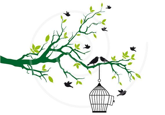 Free birds with open birdcage on tree branch, green leaves ...