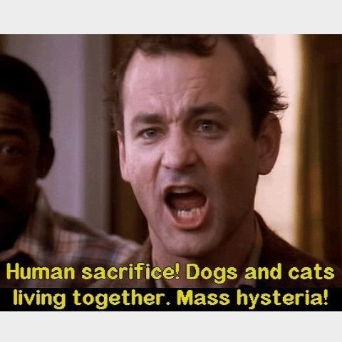 Human Sacrifice Dogs And Cats Living Together Mass Hysteria
