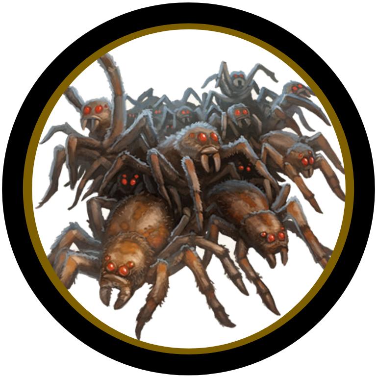 48+ Spider dnd info
