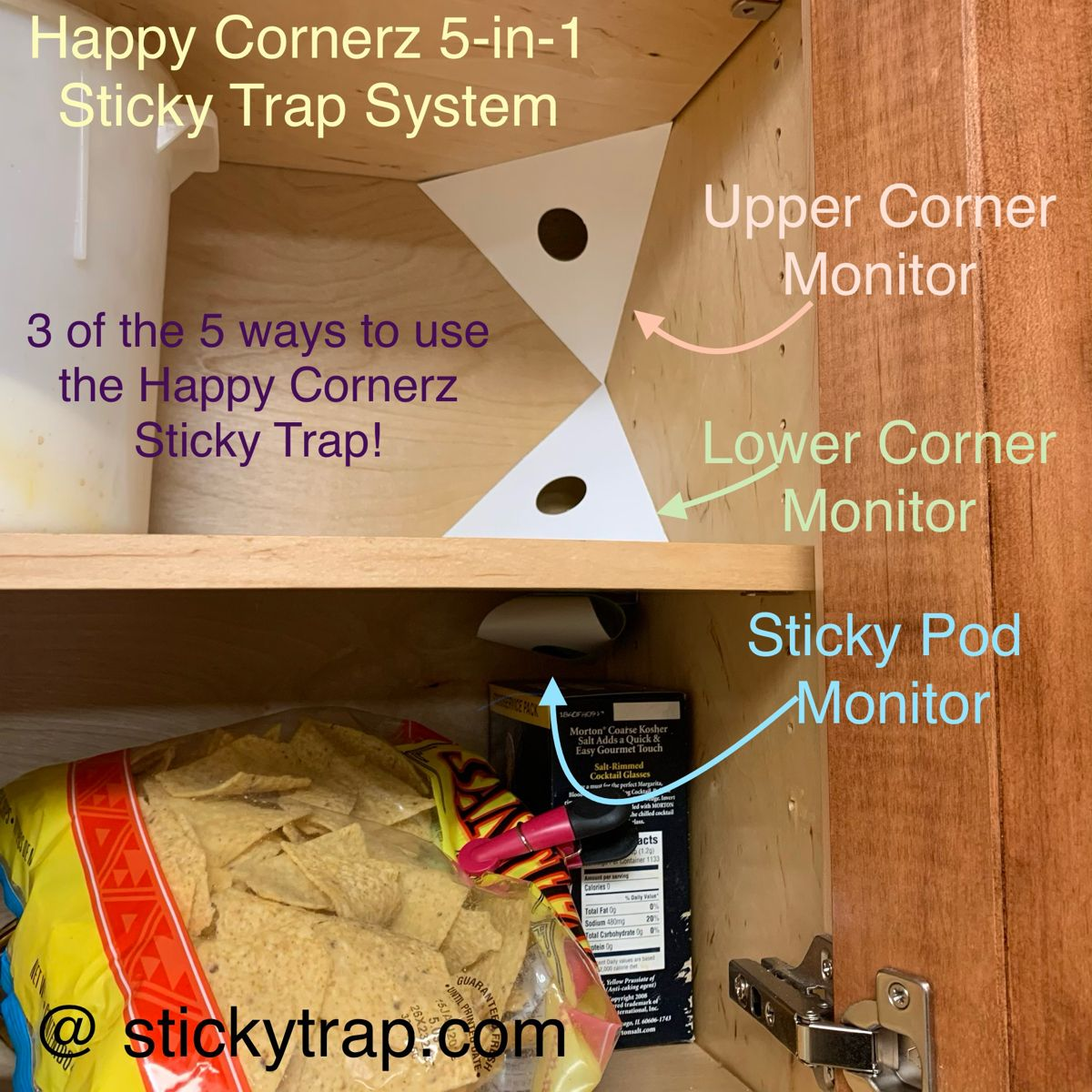 At Happy Cornerz, we take pride that 1 of our Glue Traps