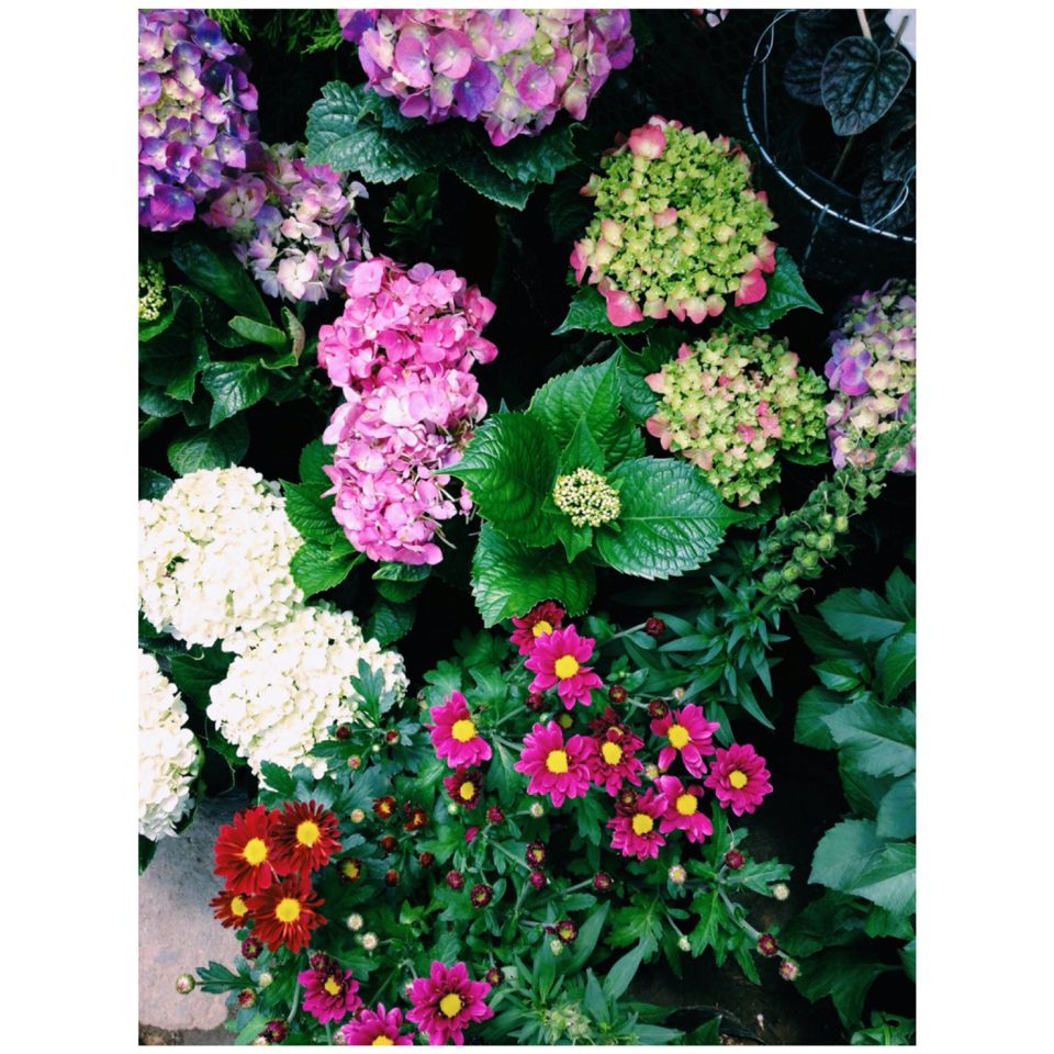 lovely colours :) love!