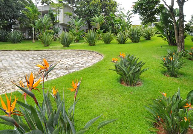 Resultado de imagem para paisagismo jardim | JARDIM ...