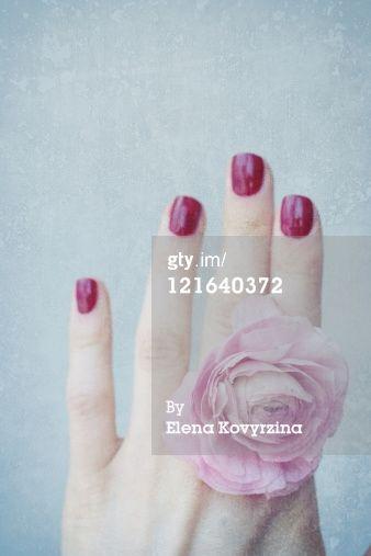 :: #flower #ring #pastels #photography #inspiration   : #pink #texture |  Elena Kovyrzina
