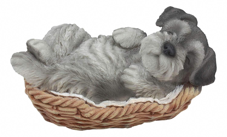 """Realistic Miniature Schnauzer Puppy Sleeping In Wicker Basket Figurine 7/""""Long"""