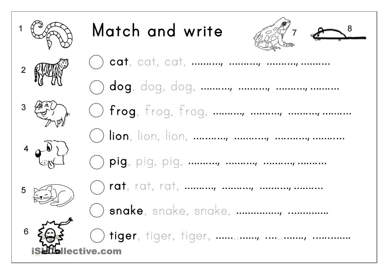 Matching, Letter tracing, Writing - Animals | English Language, ESL ...
