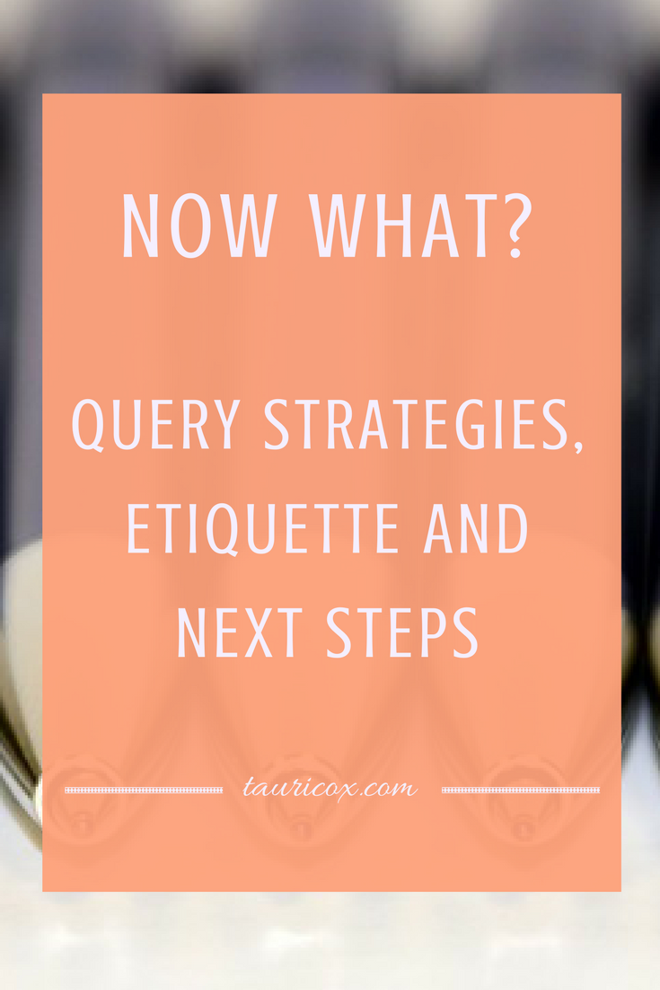 Now what? Query strategies, etiquette and next steps