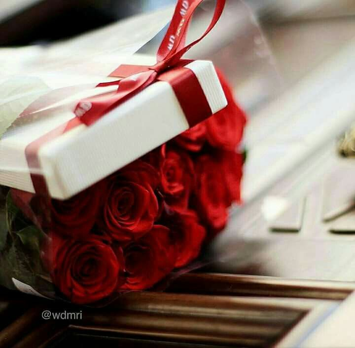 ء غريبه هذه الحياة قد تملگ فيهآ گل شيء ٳلآ آلشيء الذي تريده Ana Rosa Photo Love Flowers