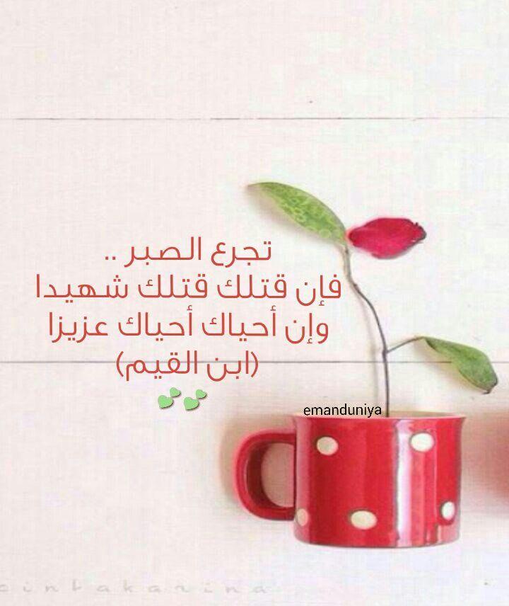 الصبر مطية لا تكبو و سيف لا ينبو Special Quotes Arabic Quotes Quran Verses