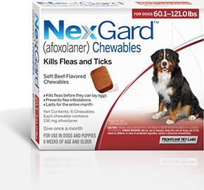About A New Flea And Tick Control Nexgard Fleas Flea And Tick Pet Meds