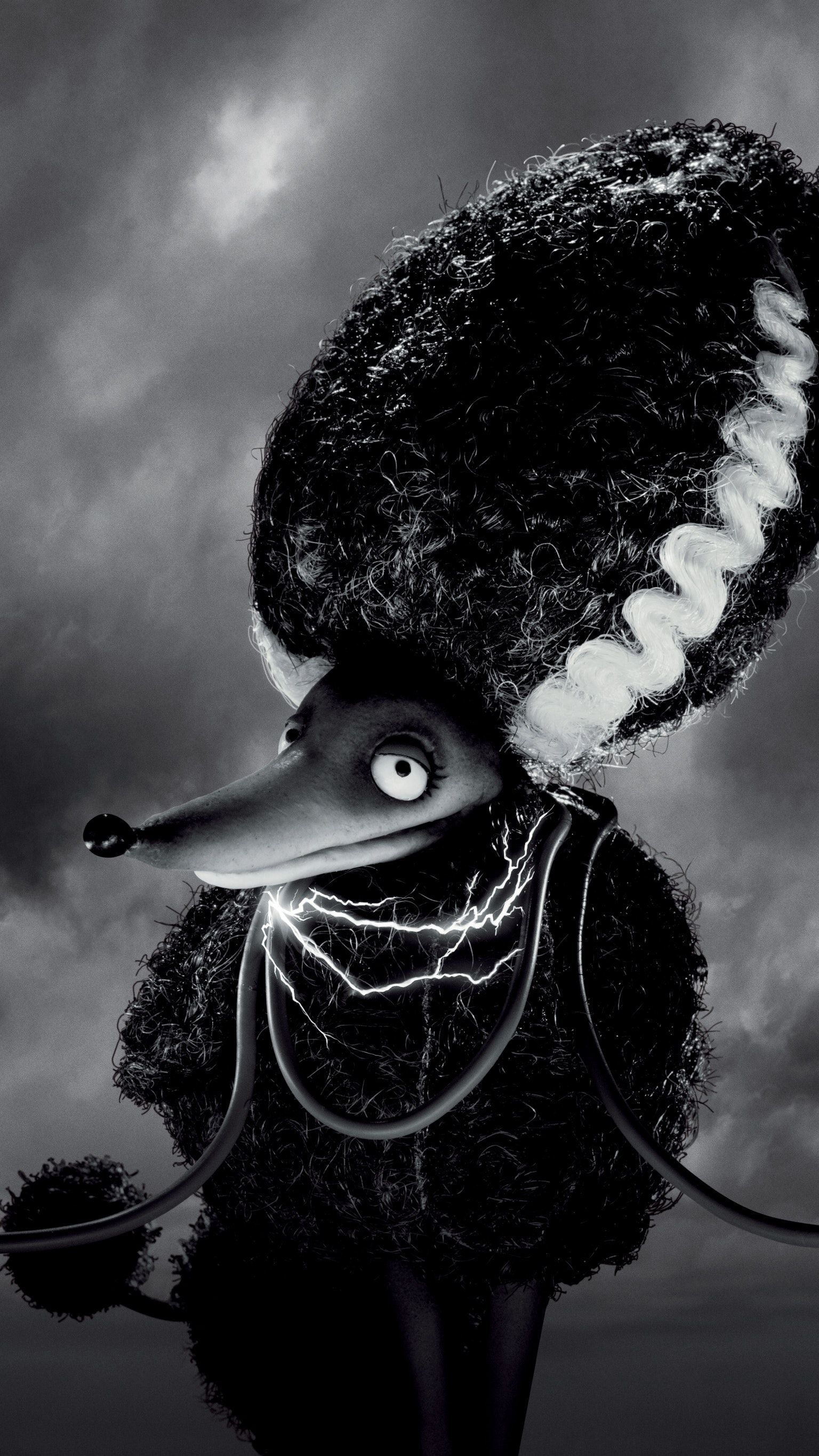 Frankenweenie 2012 Phone Wallpaper Moviemania Tim Burton Films Tim Burton Art Tim Burton Movie