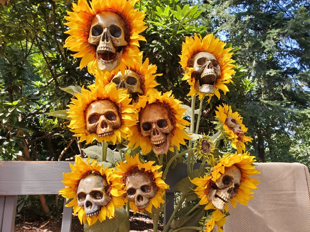 These DIY Sunflower Skeletons Scream Halloween, and I Want a Whole Garden Full of Them