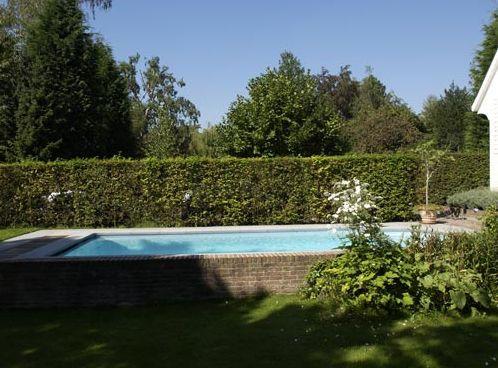 Semi Inground Garden Around Backyard Pool
