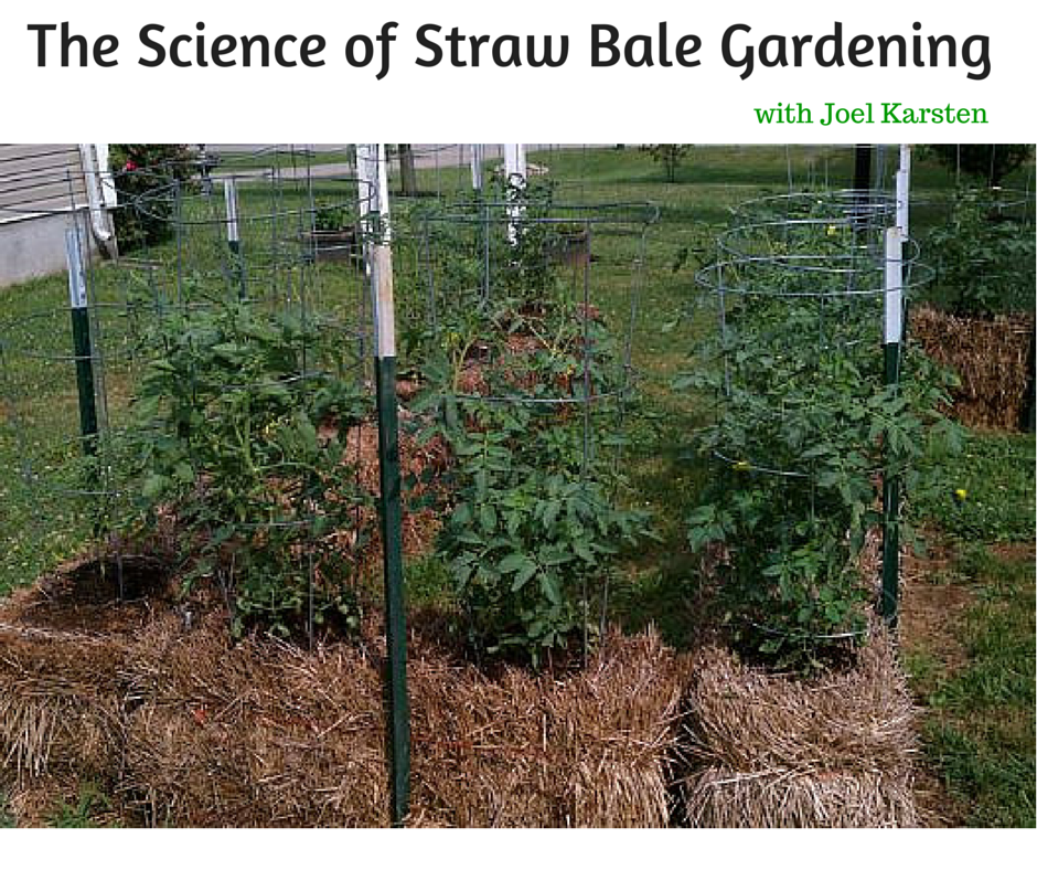 The science of straw bale gardening with joel karsten straw bales gardens and vegetable garden for Best plants for straw bale gardening