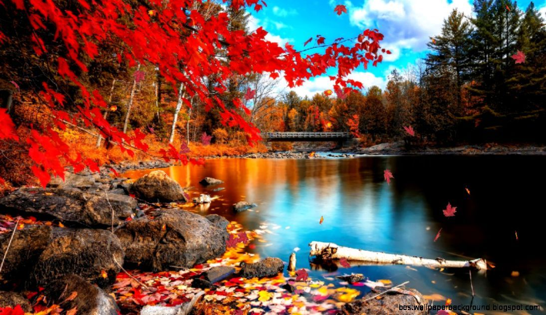 Found On Google From Freehighresolution Blogspot Com Autumn Scenery Beautiful Nature Hd Nature Wallpapers