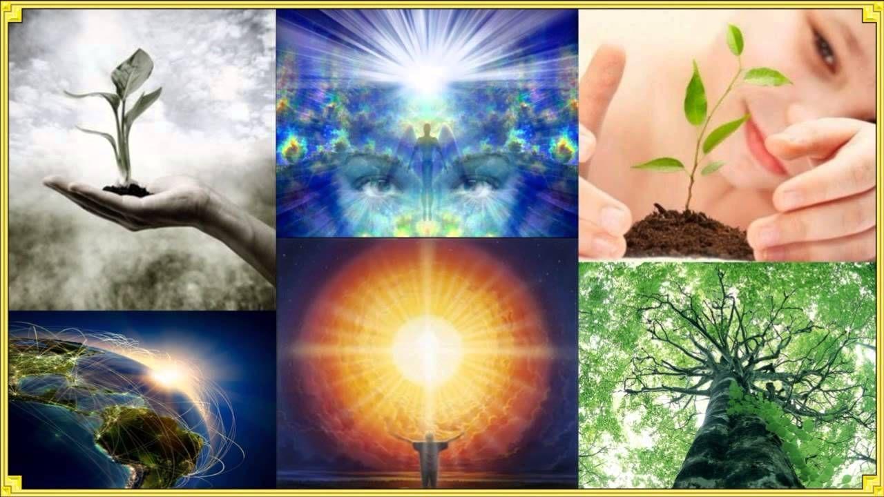 Mestra Nada - O poder da semente