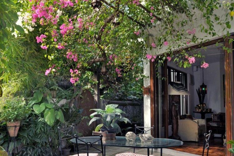 plante grimpante pergola abri de jardin bois avec pergola pour plante grimpante inspirerend les. Black Bedroom Furniture Sets. Home Design Ideas