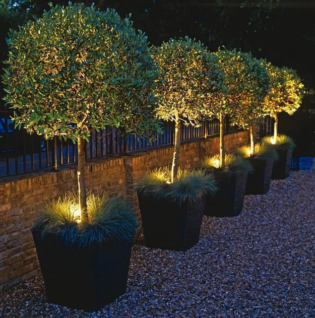 This round up is full of creative outdoor lighting ideas to light up this round up is full of creative outdoor lighting ideas to light up the garden at night try these outdoor lighting ideas when you want to illumin aloadofball Images
