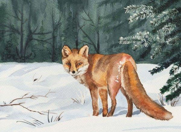 líška, watercolor, fox, Forest, snow
