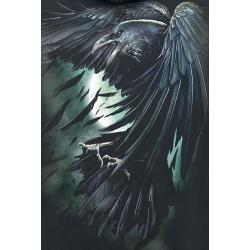 Photo of Spiral Shadow Raven Herren-Kapuzenpullover – schwarz Spiral Direct