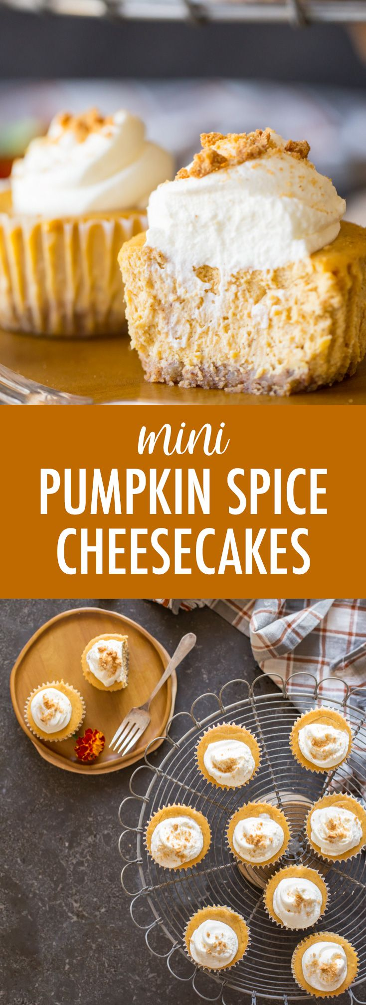 These Pumpkin Spice Cheesecakes are perfect for your Thanksgiving dessert. They are silky smooth and creamy, perfectly spiced, and can be made in advance! #pumpkinpie #fallrecipes #thanksgiving #cheesecake #dessert #pumpkinspicecupcakes