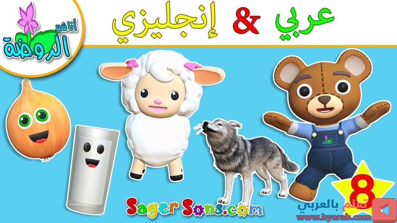 اناشيد الروضة تعليم الاطفال نطق الكلمات عربي انجليزي الحلقة 8 بدون موسيقى بدون Scooby Doo Character Scooby