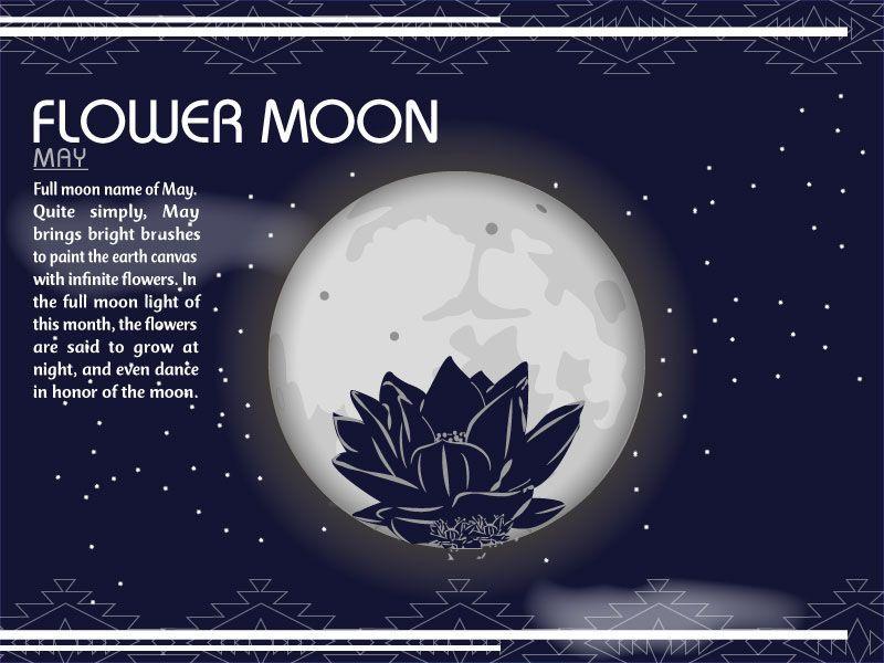 2e7293b0e92f3 Flower Moon Full Moon Names, Flower Room, Moon Phases, Numerology, Small  Tattoos