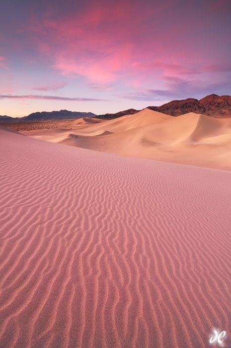 Desert Dream - Joshua Cripps Photography