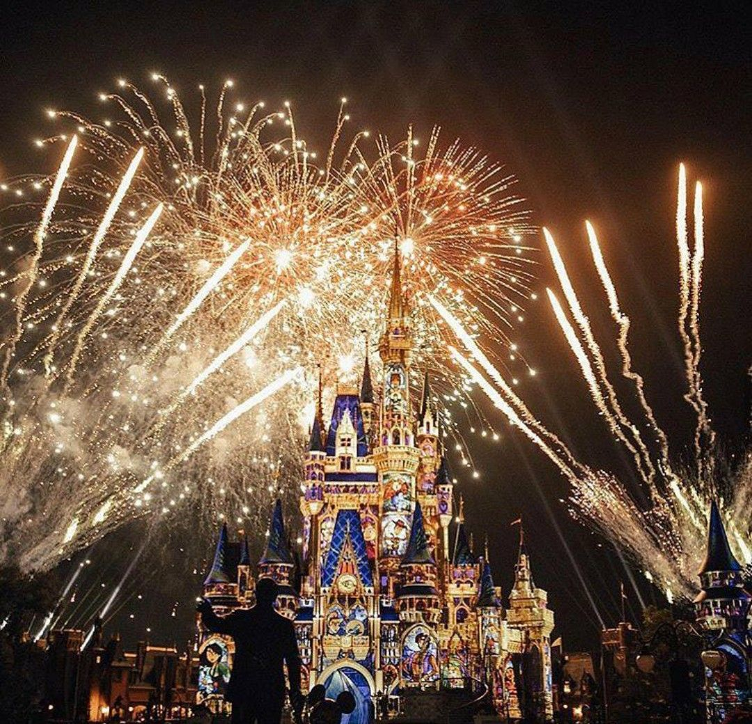 Love The Fireworks Disneyland Photography Disney Wallpaper Pins