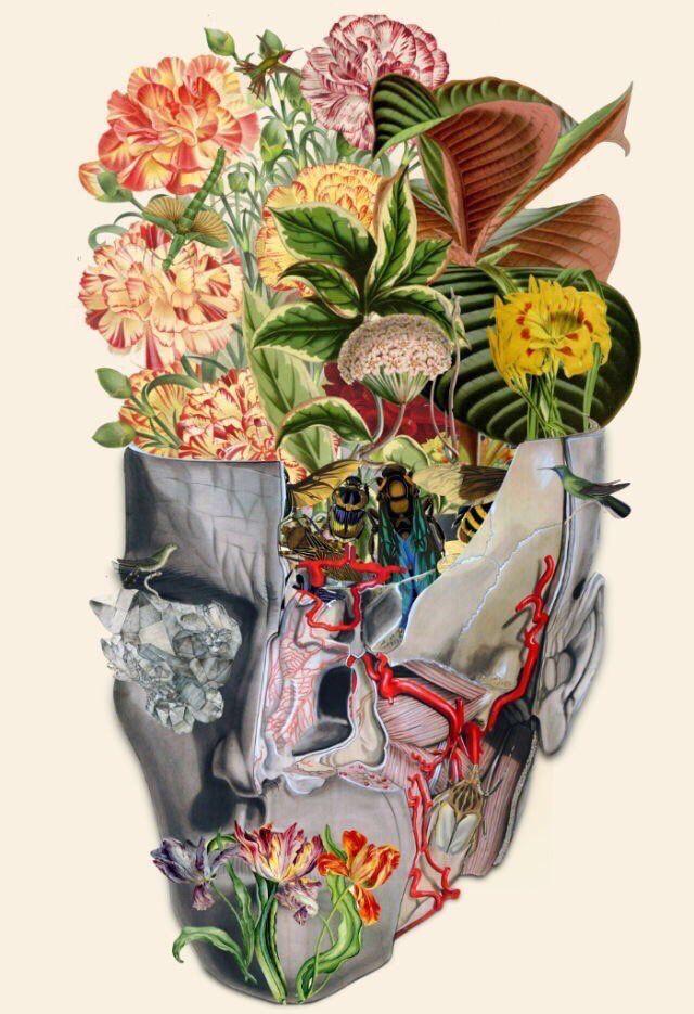 Pin De Grace En Ideas Tattoo Arte Cerebro Arte De Anatomia Dibujos De Psicologia