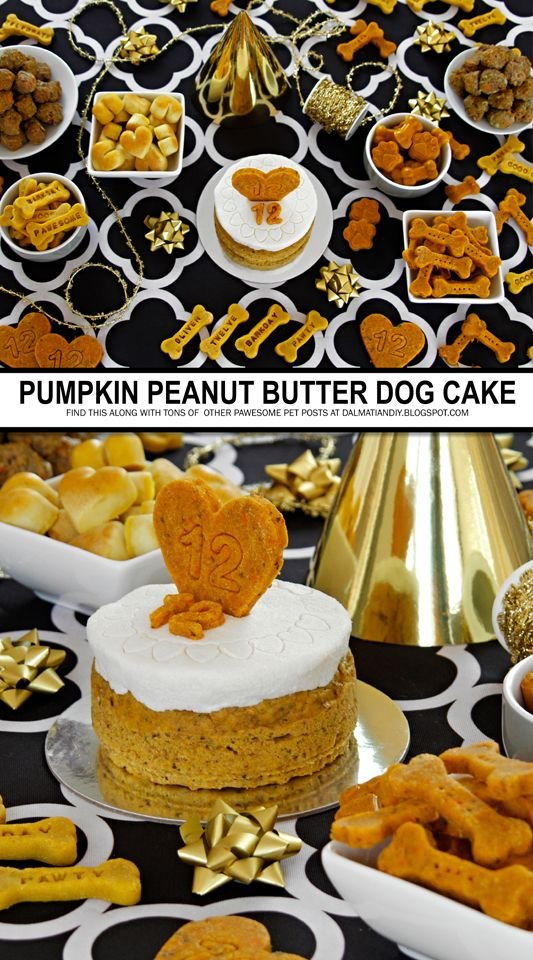 Diy Dog Birthday Cake Recipe Recipe Pumpkin Peanut
