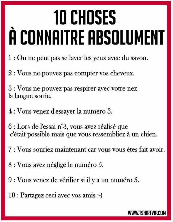 Citations Humour on Pinterest | Bonheur, Citation Amour and French ...