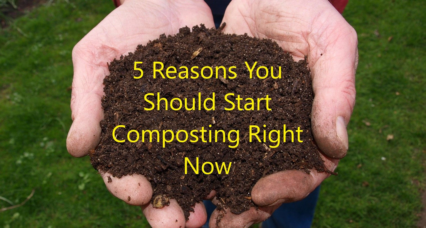 Park Art|My WordPress Blog_How Much Compost Do I Need For Clay Soil