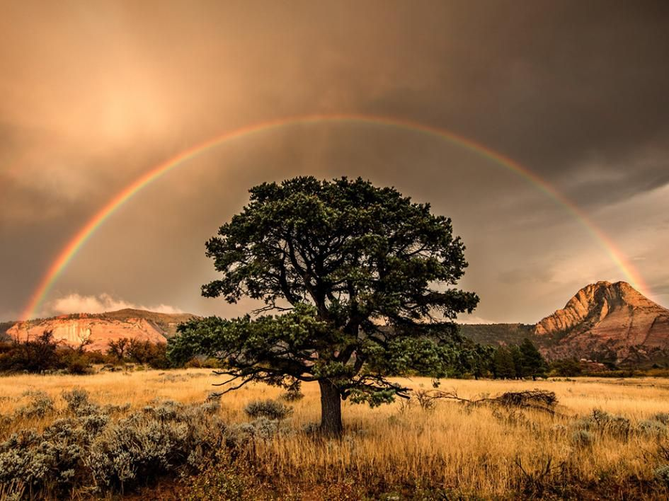 Picture of a rainbow over Zion National Park, Utah