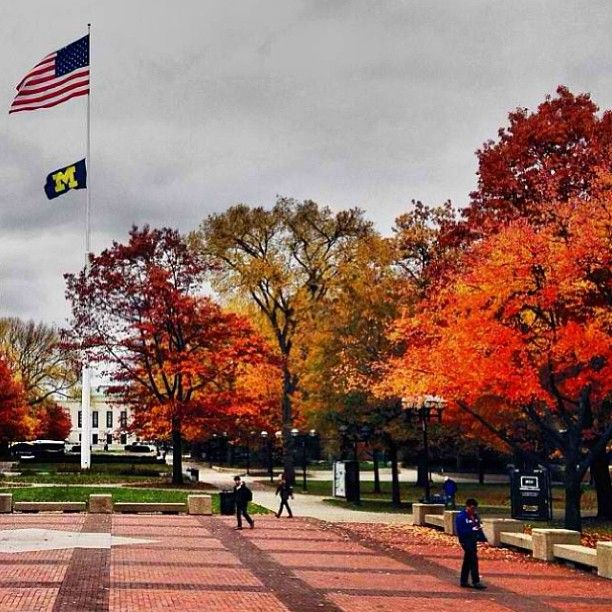 Our Students Love Spending Time In The Diag In The Fall