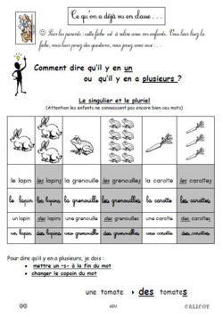 CP * EDL Le singulier et le pluriel | grammaire | Le ...