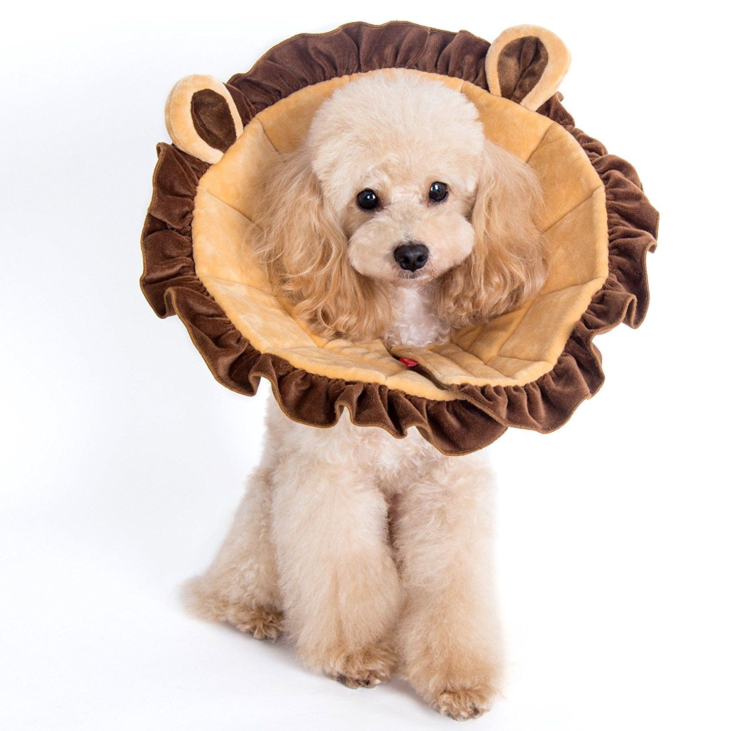Lion Cone Recovery Collar For Dogs And Cats Pet Supplies Dog