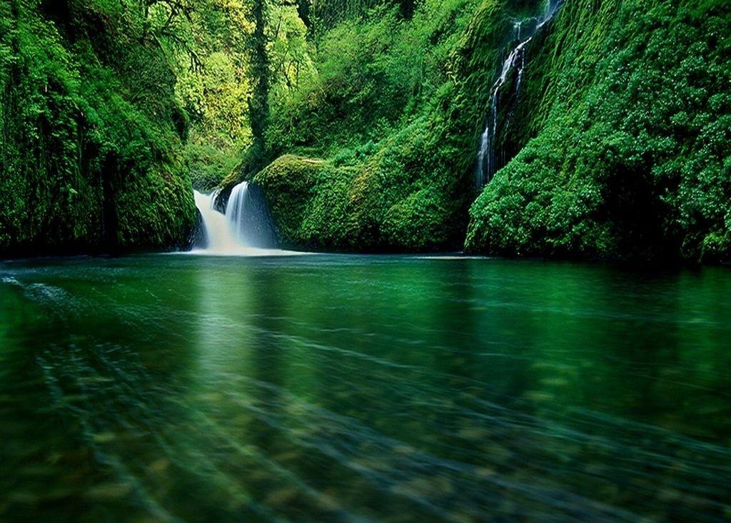 Wellness wallpaper hochkant  Forest Waterfall Wallpaper… | Breathtaking Views | Pinterest
