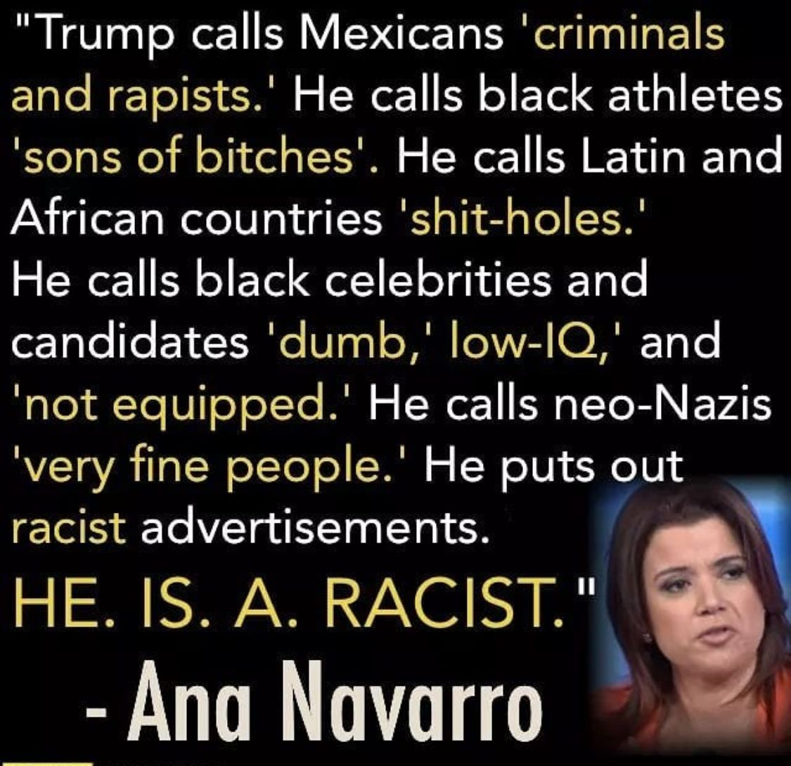 Image result for ana navarro quotes