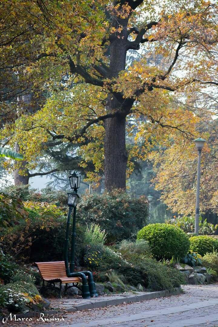 Lampioni Innamorati Al Parco Del Valentino Torino Turin Italy Living In Italy