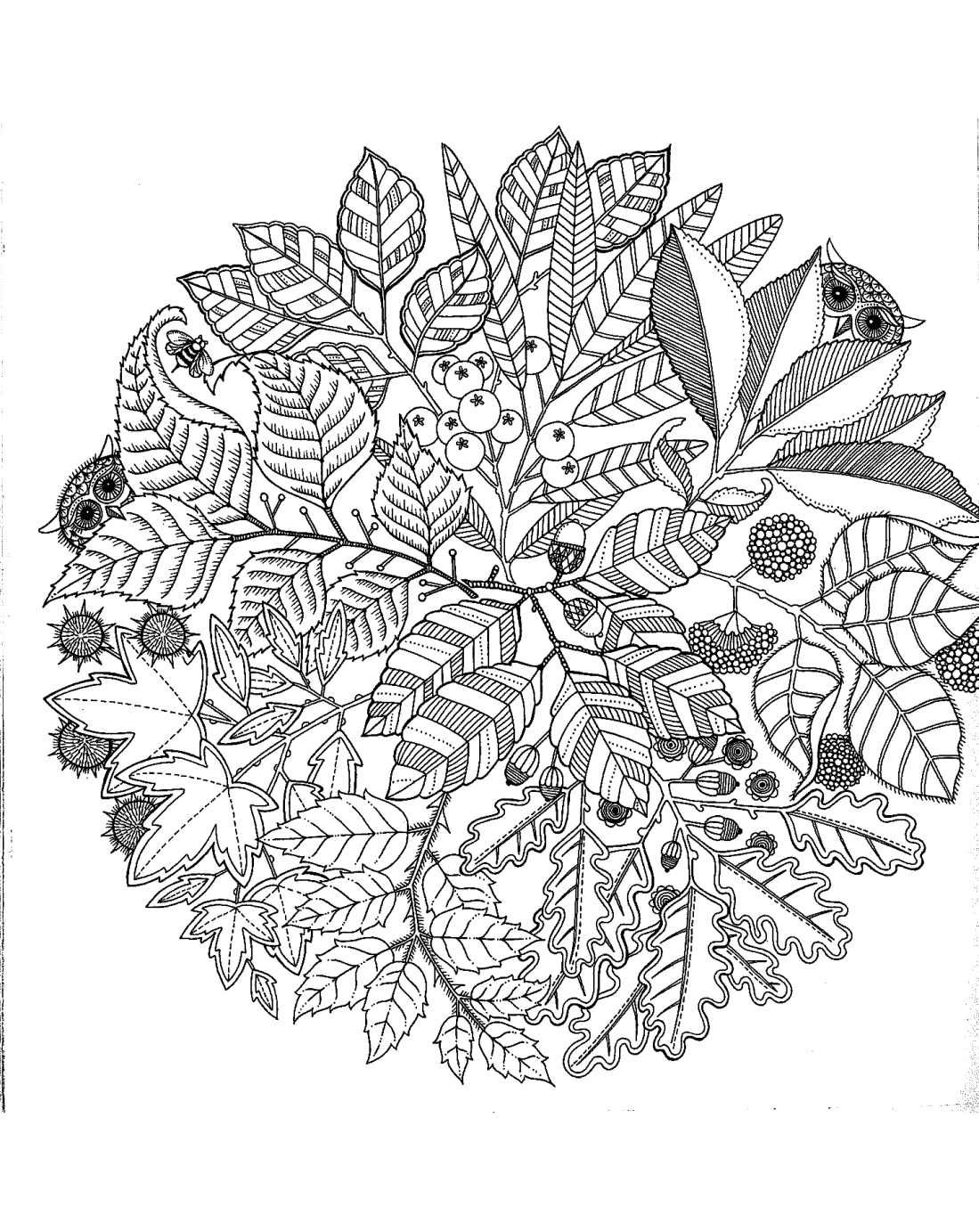Pour imprimer ce coloriage gratuit coloriage pour adultes - Coloriage a imprimer mandala ...