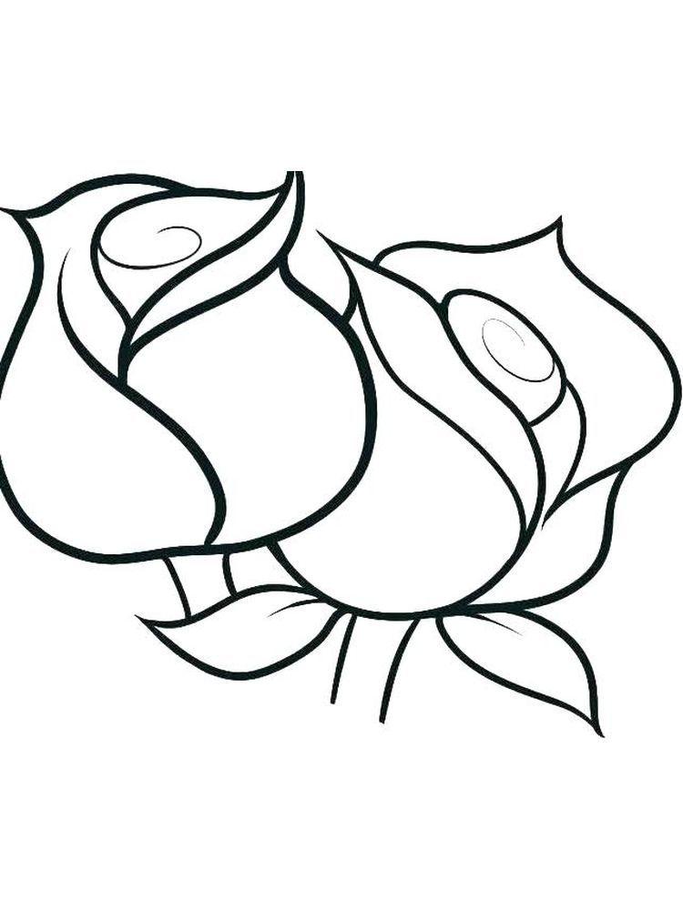 Rose Coloring Pages For Kindergarten
