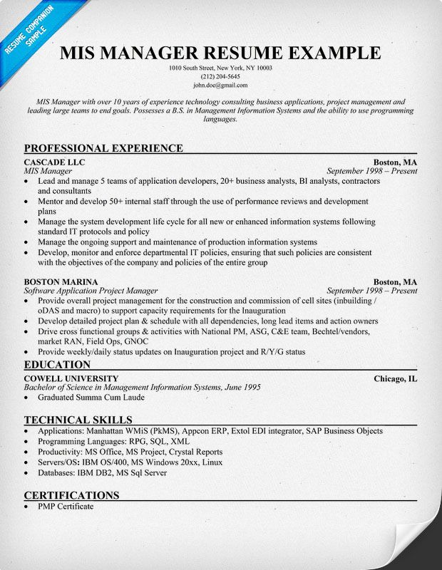 Mis Manager Resume Example Resumecompanion Com Career Jobs