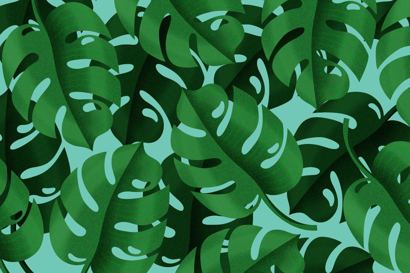 Green fever on Behance Plants, Plant leaves, Leaves