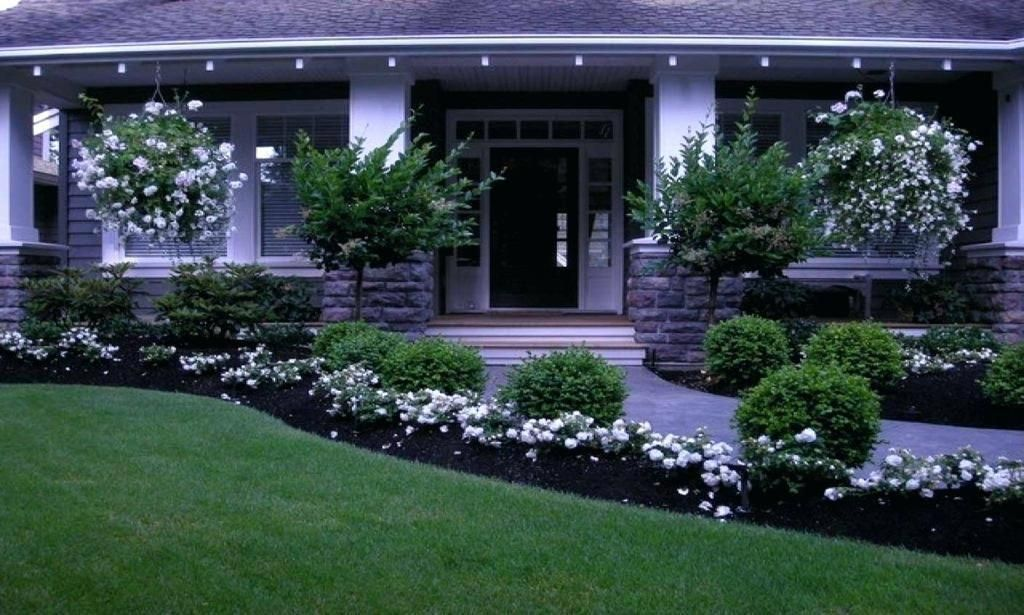 no maintenance front yard landscaping gorgeous low ...